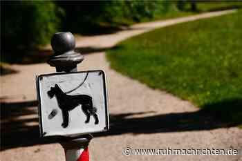 Hund ohne Leine im Stadtgarten Castrop-Rauxel: Fall landet vor Gericht - Ruhr Nachrichten