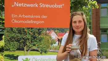 Waldeck Frankenberg: Öko-Dünger aus Schafwolle, Kreis sucht regionalen Akteur zur Umsetzung – Besserer Verd... - HNA.de