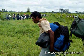 «Ituango en una encrucijada de pobreza y violencia» – Contagio Radio - Contagio Radio