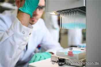 Coronavirus: Nur noch ein Infizierter in Haltern - weiterer Todesfall im Kreis - Ruhr Nachrichten