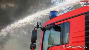 Wieder Waldbrand in Gangelt-Süsterseel