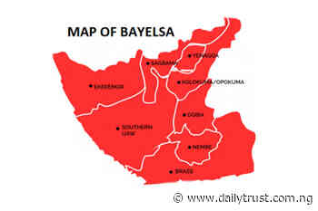 Bayelsa community rescued from landslide - Daily Trust