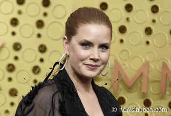 Amy Adams Cast in 'Kings of America' — Netflix Limited Series - News Lagoon