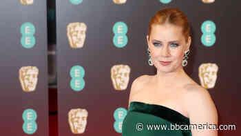 Casting News: Amy Adams to Star in Dark Comedy 'Nightbitch' - Anglophenia