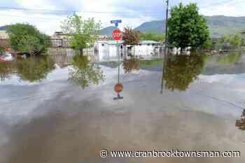Provinces not moving fast enough to assess, mitigate flood risk: report - Cranbrook Townsman