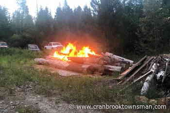 Arson suspected in several wildfires lit near Kootenay town - Cranbrook Townsman