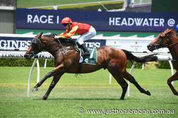 Gerald Ryan's horses dominate The Rosebud - Just Horse Racing
