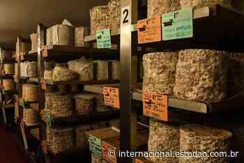 Produção de queijos pede socorro na Inglaterra: salvem nosso Stilton - Internacional Estadão
