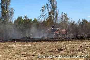 Gironde : feu de broussailles à Blanquefort dans une ancienne décharge communale - France 3 Régions