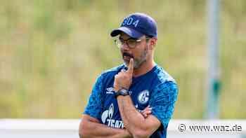 Schalke: Derby bei Borussia Dortmund Ende Oktober - Westdeutsche Allgemeine Zeitung