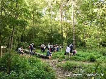 Randonnée botanique et poétique à la journée (St-Rémy-Lès-Chevreuse) Saint-Rémy-Lès-Chevreuse dimanche 30 août 2020 - Unidivers