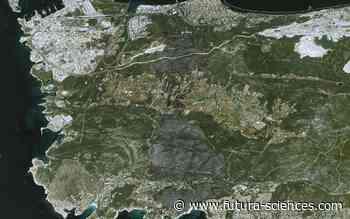 Martigues : des feux de forêts impressionnants vus par les satellites Pléiades - Futura