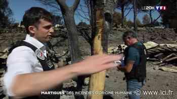 Feu de forêt à Martigues : des incendies d'origine humaine ? - LCI