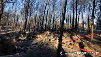 Martigues : lendemain difficile après les incendies - Franceinfo