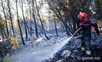 Incendie de Martigues : les numéros utiles pour la population et les dons - Gomet'