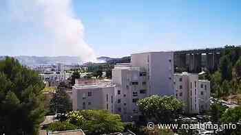 Martigues - Faits-divers - Deux départs de feu signalés à Martigues - Maritima.info