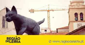 Leiria celebra Dia Mundial do Gato com oferta de escultura à cidade - Região de Leiria