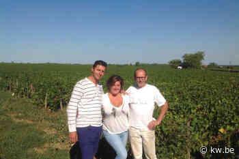 """Gaby Delanghe is kind aan huis op wijndomein Bohrmann: """"Wijn maken is zeer boeiend, topwijn leren ke"""