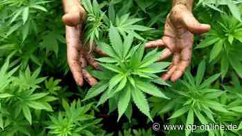 Dietzenbach: 40-Jähriger Dietzenbacher bekommt wegen Drogenbesitzes zwei Jahre auf Bewährung - op-online.de