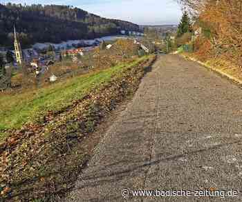 Sanierungen von Hallen und Straßen haben Priorität - Ettenheim - Badische Zeitung