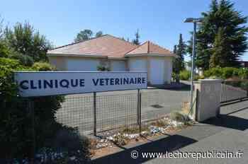 Une clinique vétérinaire de Rambouillet fermée après un cas de Covid - Echo Républicain