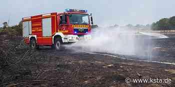Großer Feuerwehreinsatz in Dormagen: Rund 60 000 Quadratmeter Wald und Wiesen brennen - Kölner Stadt-Anzeiger