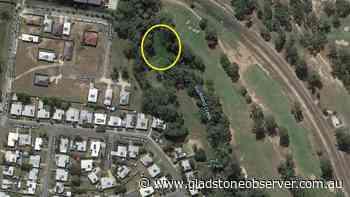 'Infested' parcel of land in Gladstone transformed - Observer