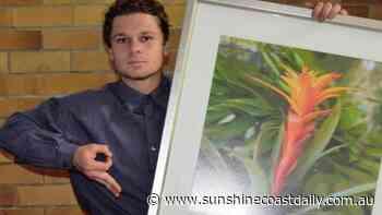 Drunken dance with a Bonsai tree turns ugly - Sunshine Coast Daily