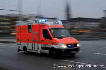 Esslingen: Pedelec -Fahrerin bei Verkehrsunfall leicht verletzt - Esslingen - esslinger-zeitung.de
