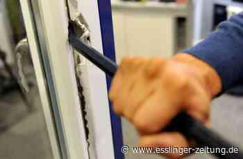 Esslingen: Nach Einbruchsversuch festgenommen - Esslingen - esslinger-zeitung.de