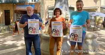 Manosque : une subvention de 60 000€ pour relancer le commerce - La Provence