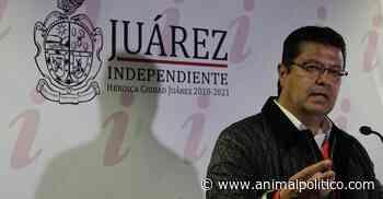 Gobierno de Juárez da contratos millonarios a compadre del alcalde - Animal Político