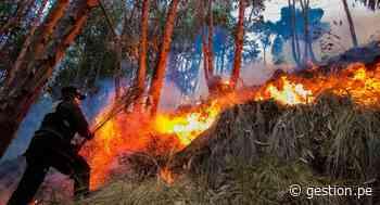 En Cusco todas las provincias tienen condiciones de medias a muy altas para ocurrencia de incendios - Diario Gestión