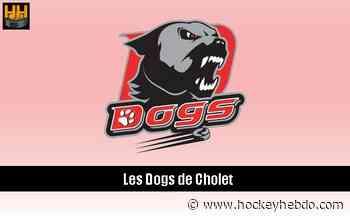 Hockey sur glace : Cholet : Calendrier de pré-saison - Division 1 : Cholet (Les Dogs) | Hockey Hebdo - hockeyhebdo Toute l'actualité du hockey sur glace