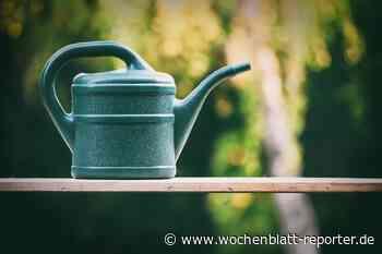 Wasserentnahme aus Bächen, Gräben und Seen im Landkreis Germersheim: Schöpfen ist erlaubt, pumpen wird best - Wochenblatt-Reporter