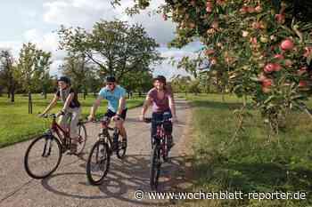 Urlaub in der Südpfalz: Eine kleine Weltreise durch die Region - Germersheim - Wochenblatt-Reporter