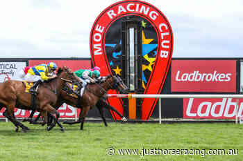 8/8/2020 Horse Racing Tips and Best Bets – Moe - Just Horse Racing