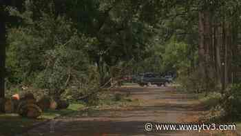 New Hanover County to begin removing storm debris next week - WWAY NewsChannel 3