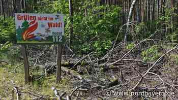 Waldbrandgefahr: Regierung von Oberfranken ordnet vorsorgliche Luftbeobachtung an - Nordbayern.de