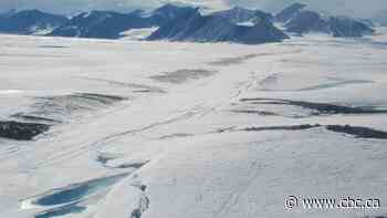 Collapsed Arctic ice shelf adds 'exclamation point' to dire climate trends, say scientists