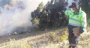 Apagan incendio forestal en distrito de Huando - Diario Correo