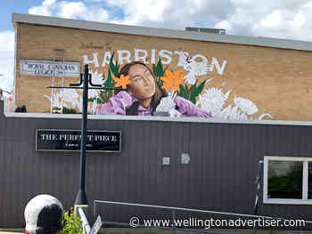 Mural Mania in Minto brings public art to downtown - Wellington Advertiser