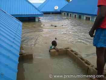 Flood destroys 110 houses in Zamfara - Premium Times