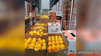 Puerto de Barranquilla consolida exportaciones de limón Tahití - EL HERALDO