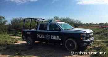 Hallan osamenta en fosa clandestina en Salinas de Hgo. - Pulso de San Luis