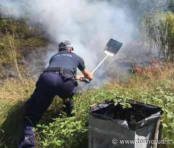 NICHELINO - Incendio al parco del Boschetto, la polizia locale evita il disastro - TorinoSud
