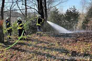 Hattingen und Sprockhövel: Wieder hohe Waldbrandgefahr - Hattingen - Lokalkompass.de