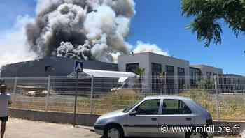 Aigues-Mortes : la piste criminelle privilégiée après le feu qui a dévasté trois entreprises - Midi Libre