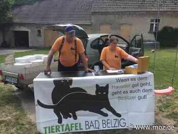 Tiertafel Bad Belzig: Sommerloch und Corona: Tiertafel in der Not! - Märkische Onlinezeitung