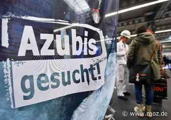 Ausbildung: Noch 6000 Lehrstellen in Brandenburg unbesetzt - Märkische Onlinezeitung